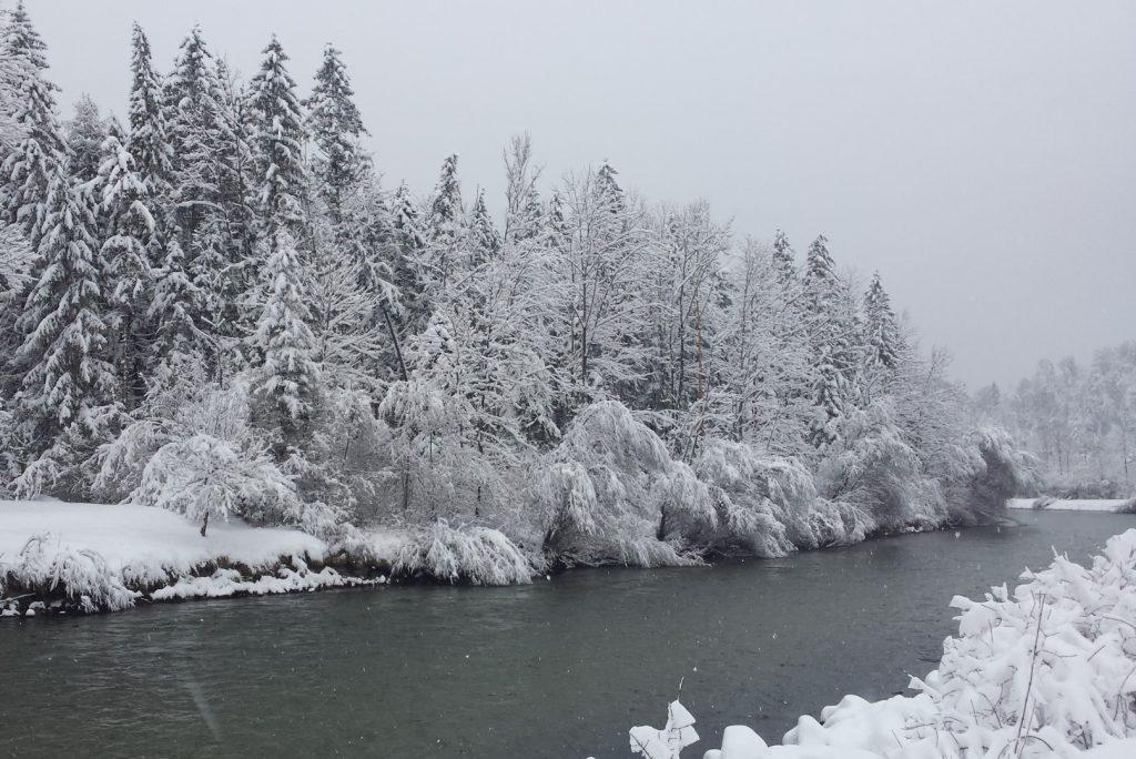 Die winterliche Traun